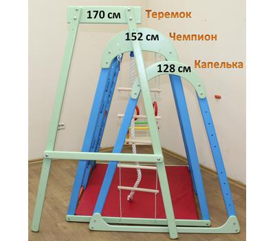 """ДСК """"Чемпион 150"""" (дерево) Plastep, фото 4"""